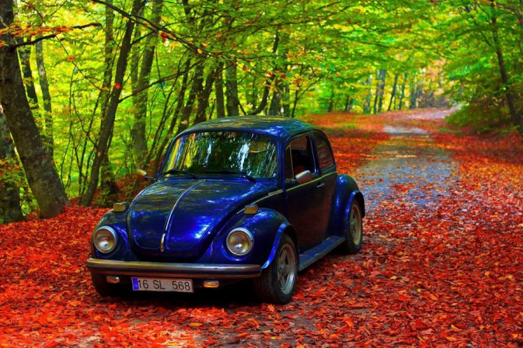 bursa turkey forest classic car tree landscape wallpaper