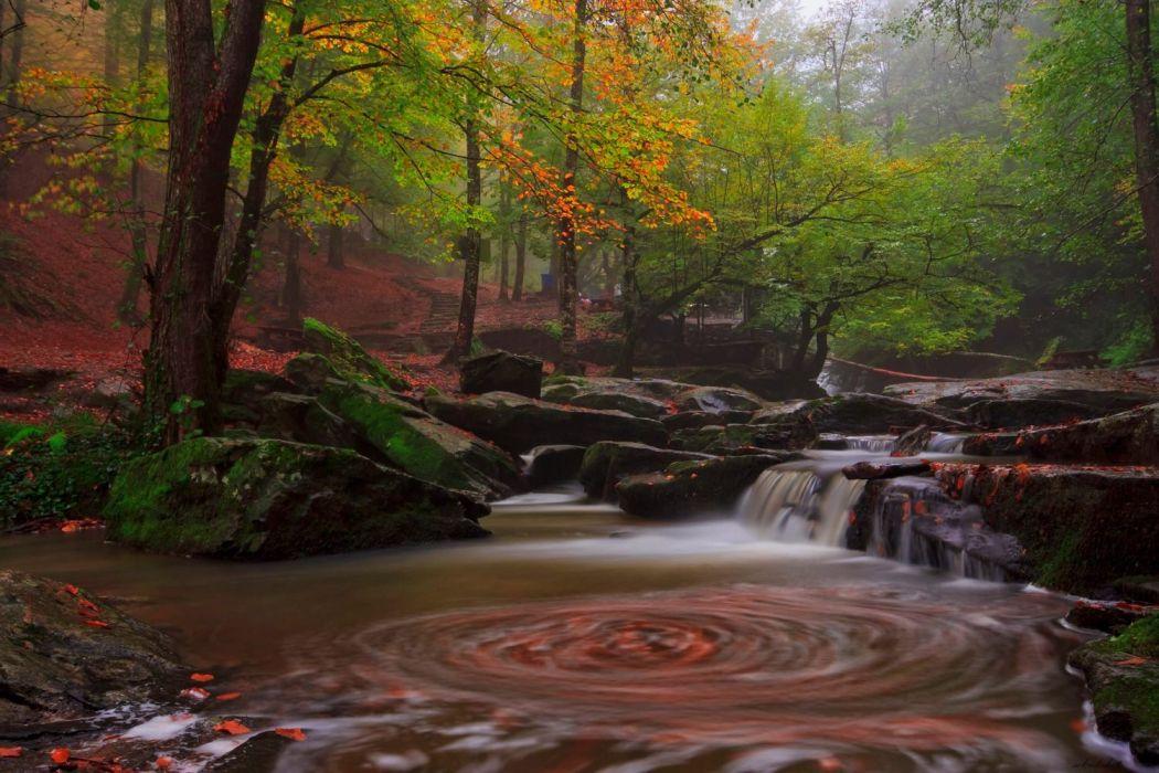 lake forest turkey bursa tree water autumn landscape wallpaper