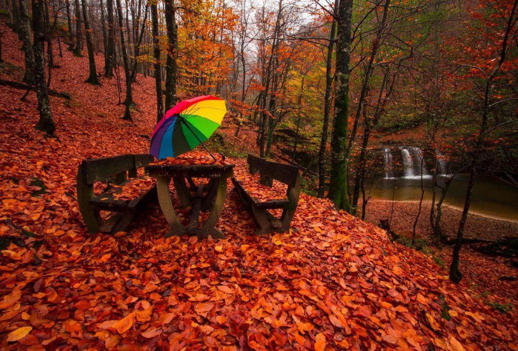 lake forest turkey bursa tree water autumn landscape waterfall color umbrella wallpaper