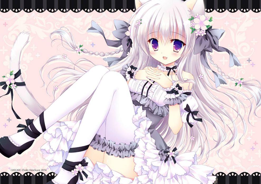animal ears blush bow catgirl dress fang flowers hasekura chiaki lolita fashion long hair original purple eyes ribbons tail thighhighs white hair wallpaper