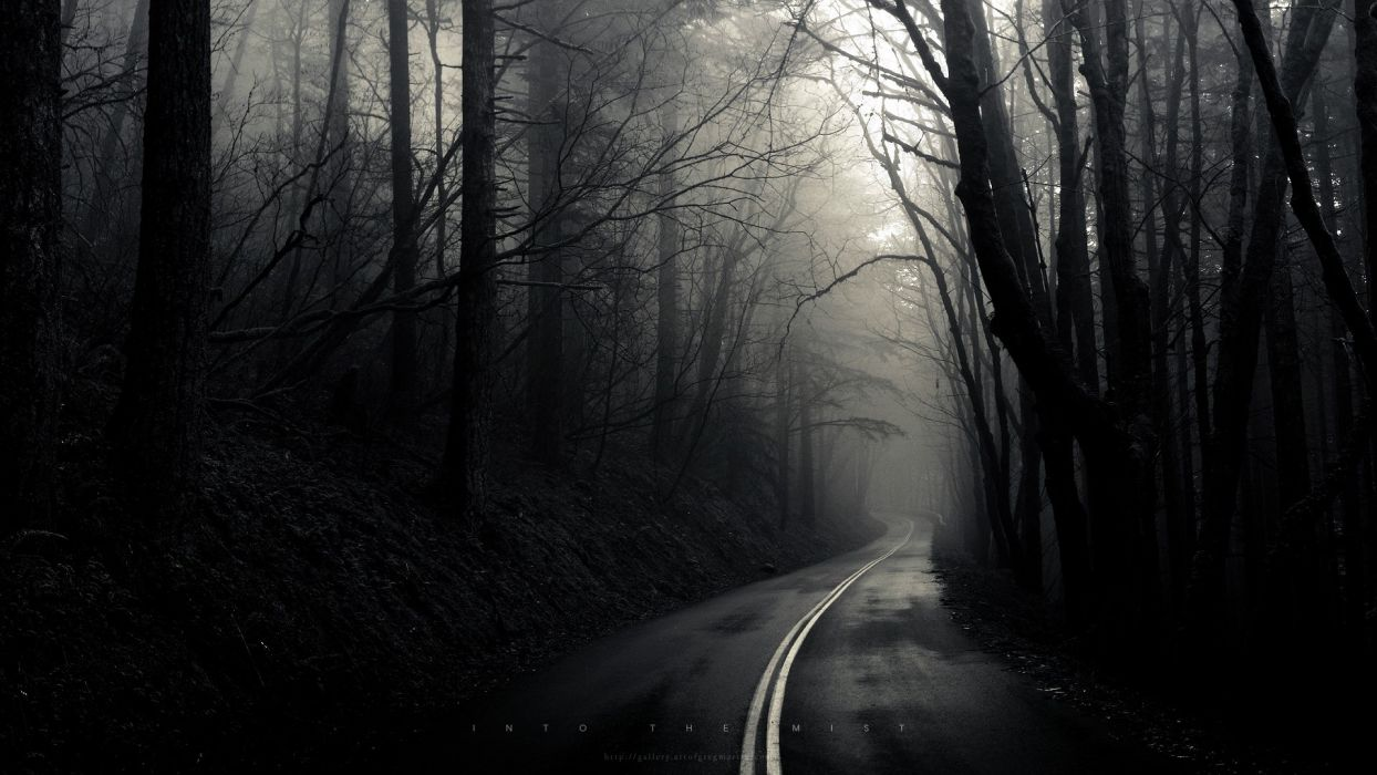 Into The Mist wallpaper