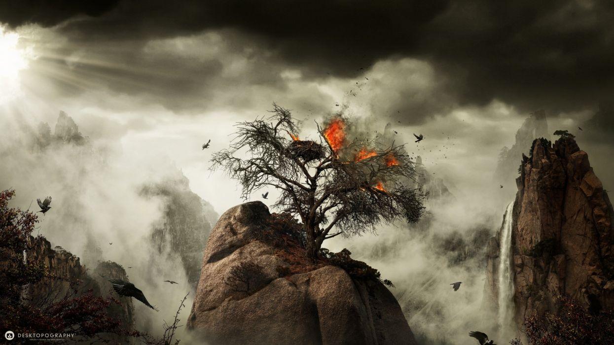 fire tree fantasy artwork bird wallpaper