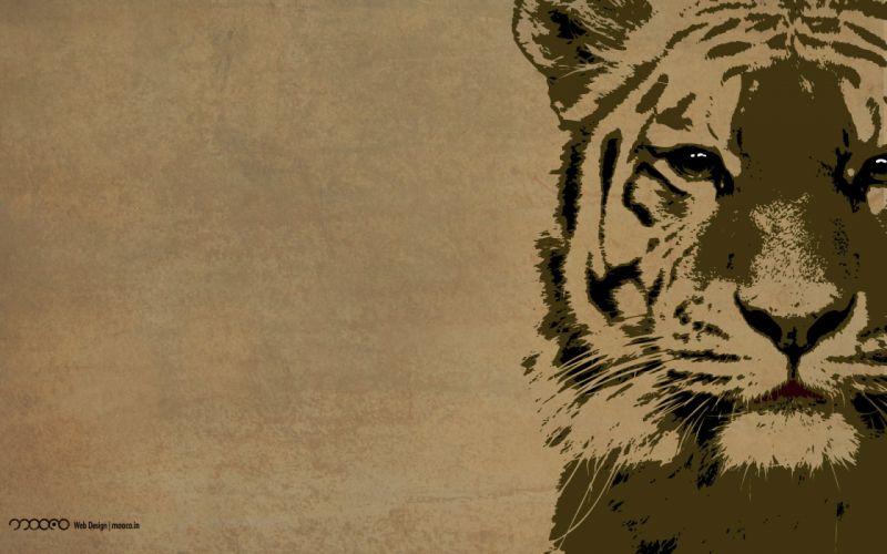Tiger Wallpaper 1920 wallpaper