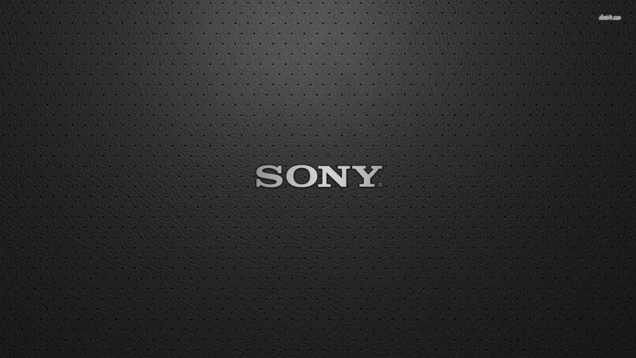 Sony Memory Stick Pro Duo wallpaper