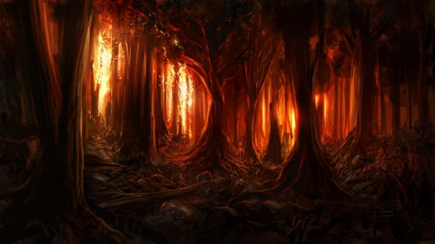 red forest fantasy tree light wallpaper