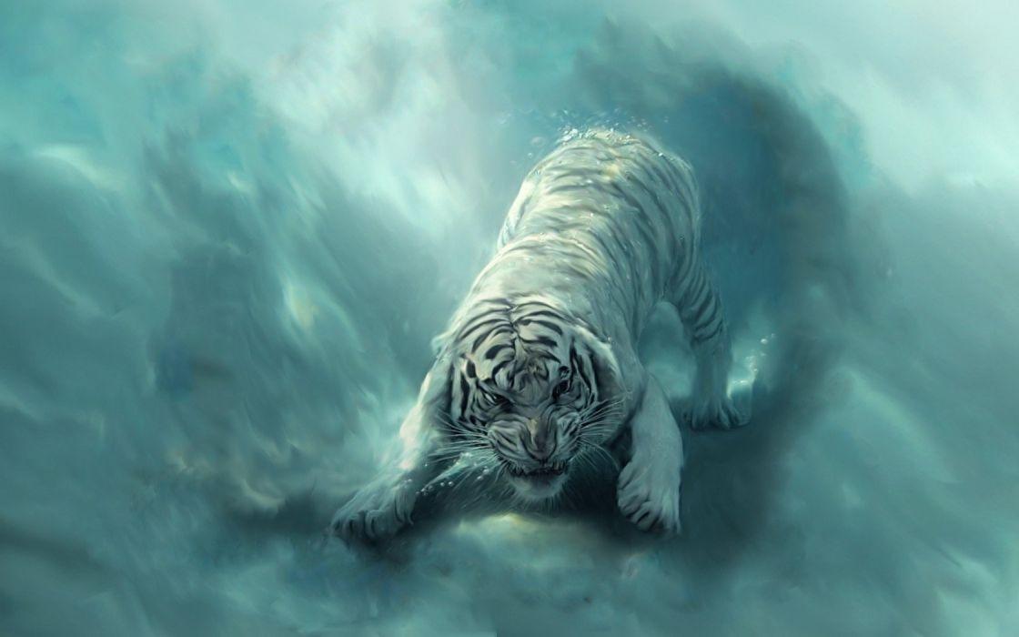 blue tigers artwork hks wallpaper