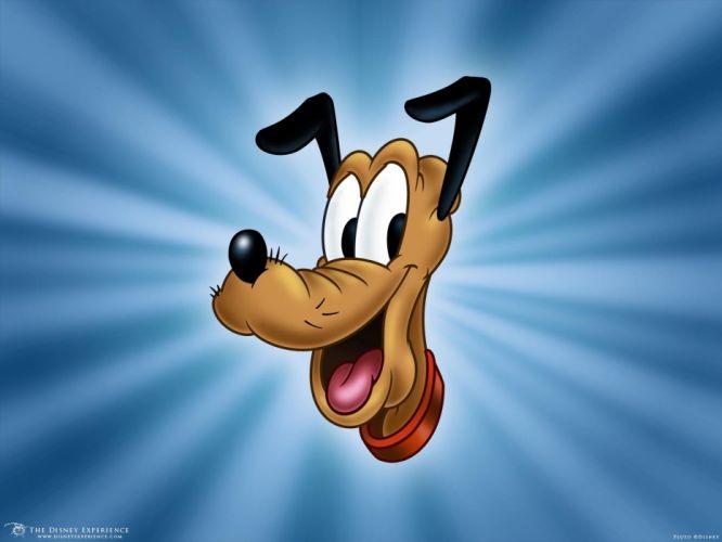 PLUTO disney animation family dog dogs comedy 1pluto wallpaper