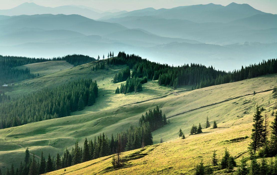 field forest Carpathians mountains Ukraine wallpaper