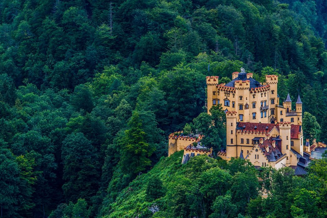 Hohenschwangau Castle Bavaria Germany castle forest wallpaper