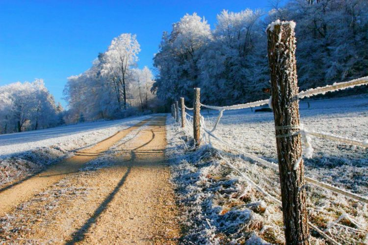 nature winter snow road trees forest sky landscape forest road nature winter sky white wallpaper