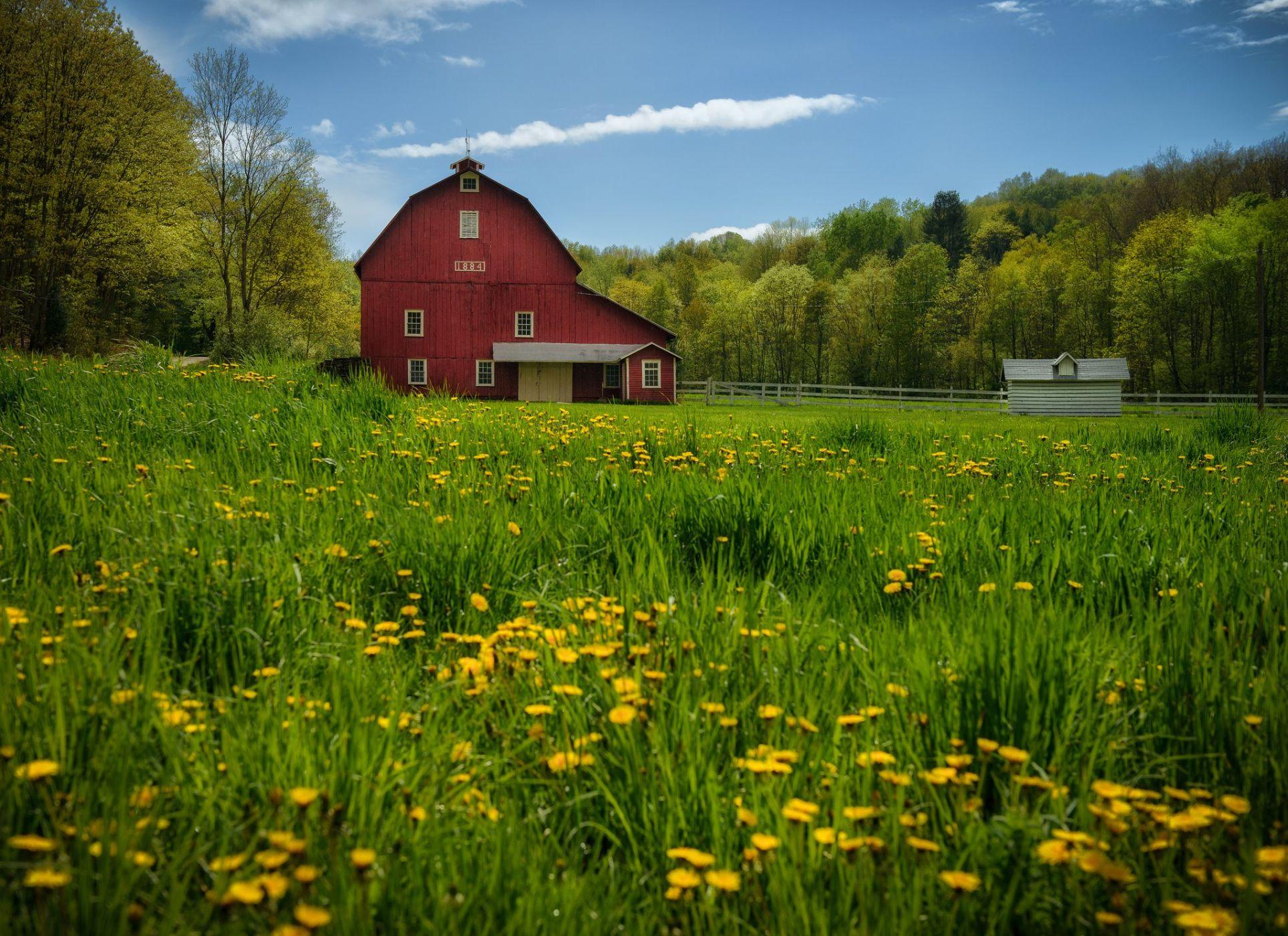 countryside home lien brilleslijper - HD1920×1080