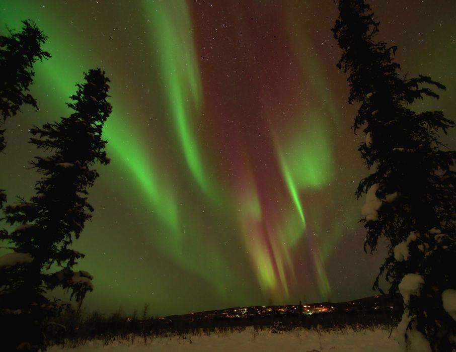 northern lights winter snow trees spruce Alaska night stars wallpaper