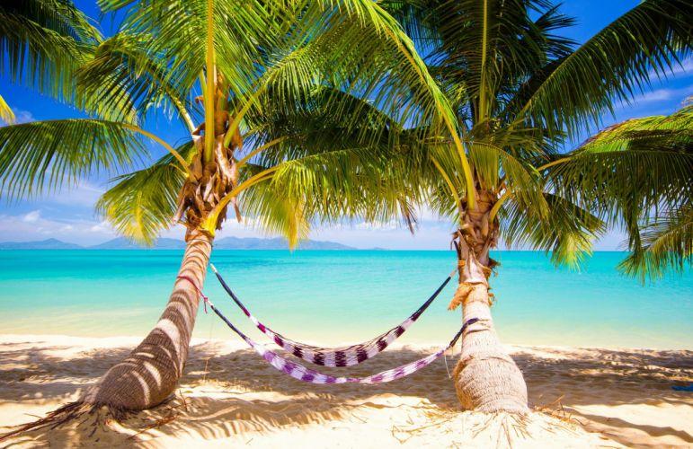 tropical sea paradise summer sunshine palms beach ocean wallpaper