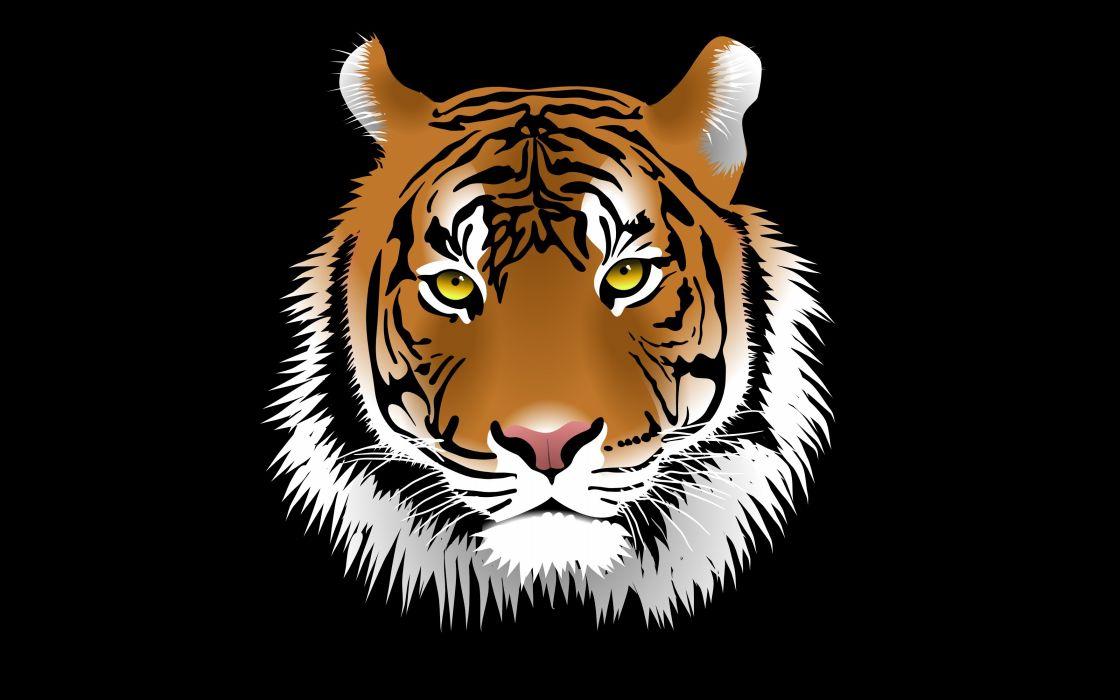 Vector Graphics Big Cats Tigers Head Snout Animals Tiger Wallpaper