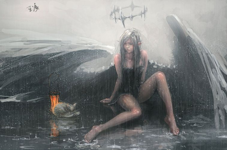 wing angel cat rain fantasy girl animal wallpaper