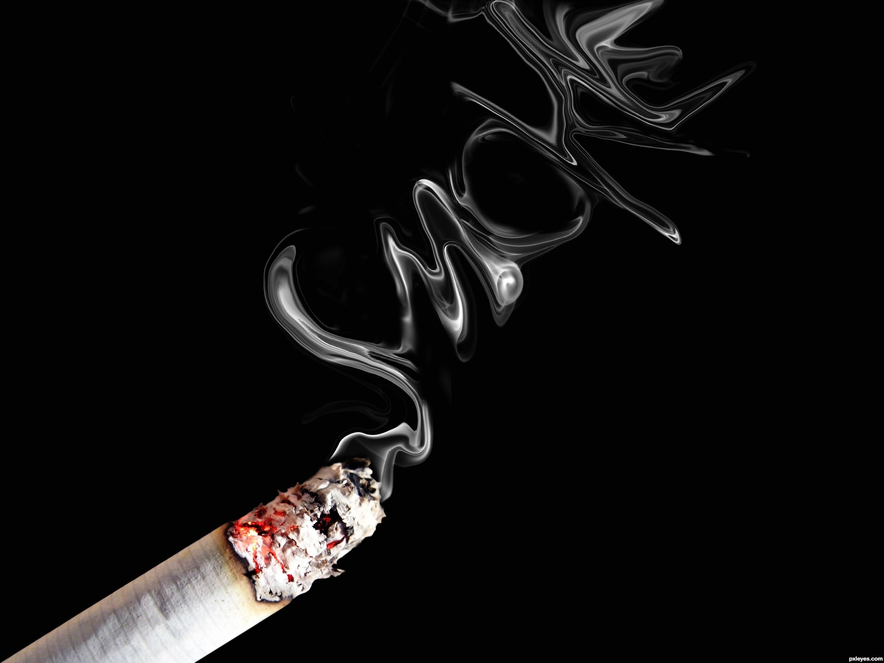 smoking habit The american heart association asks, do you really know the risks of cigarette smoking.