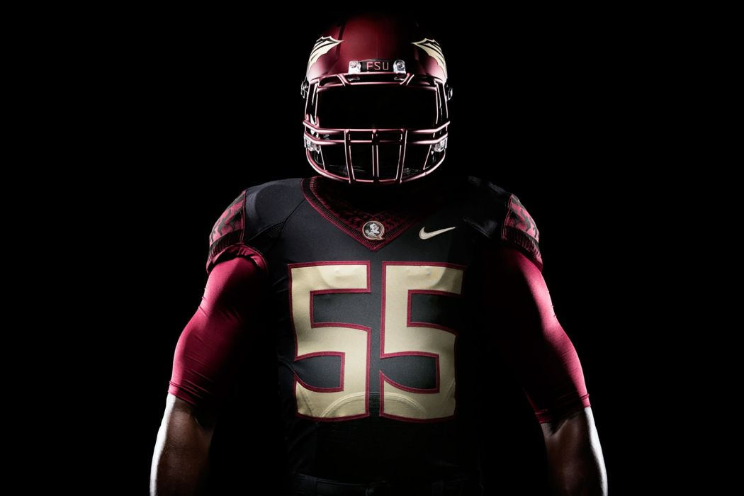 FLORIDA STATE SEMINOLES college football wallpaper