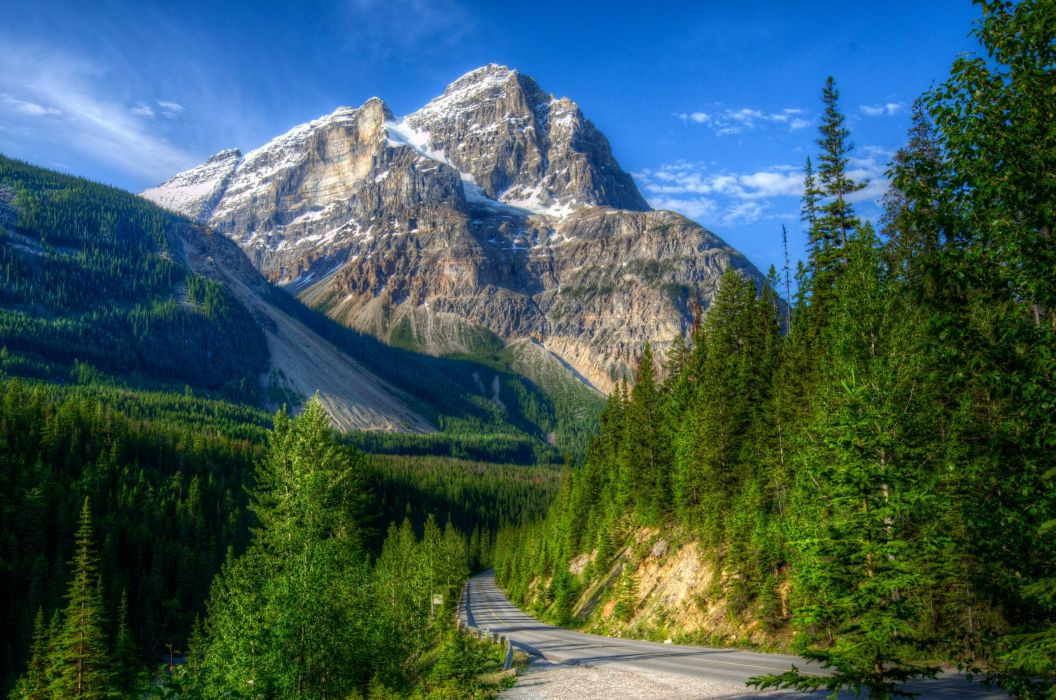 Canada Park Mountains Scenery Forest Road Yoho HDR Nature wallpaper