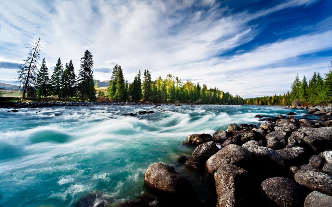 river clean water round stones blue sky fan of clouds trees pine wallpaper