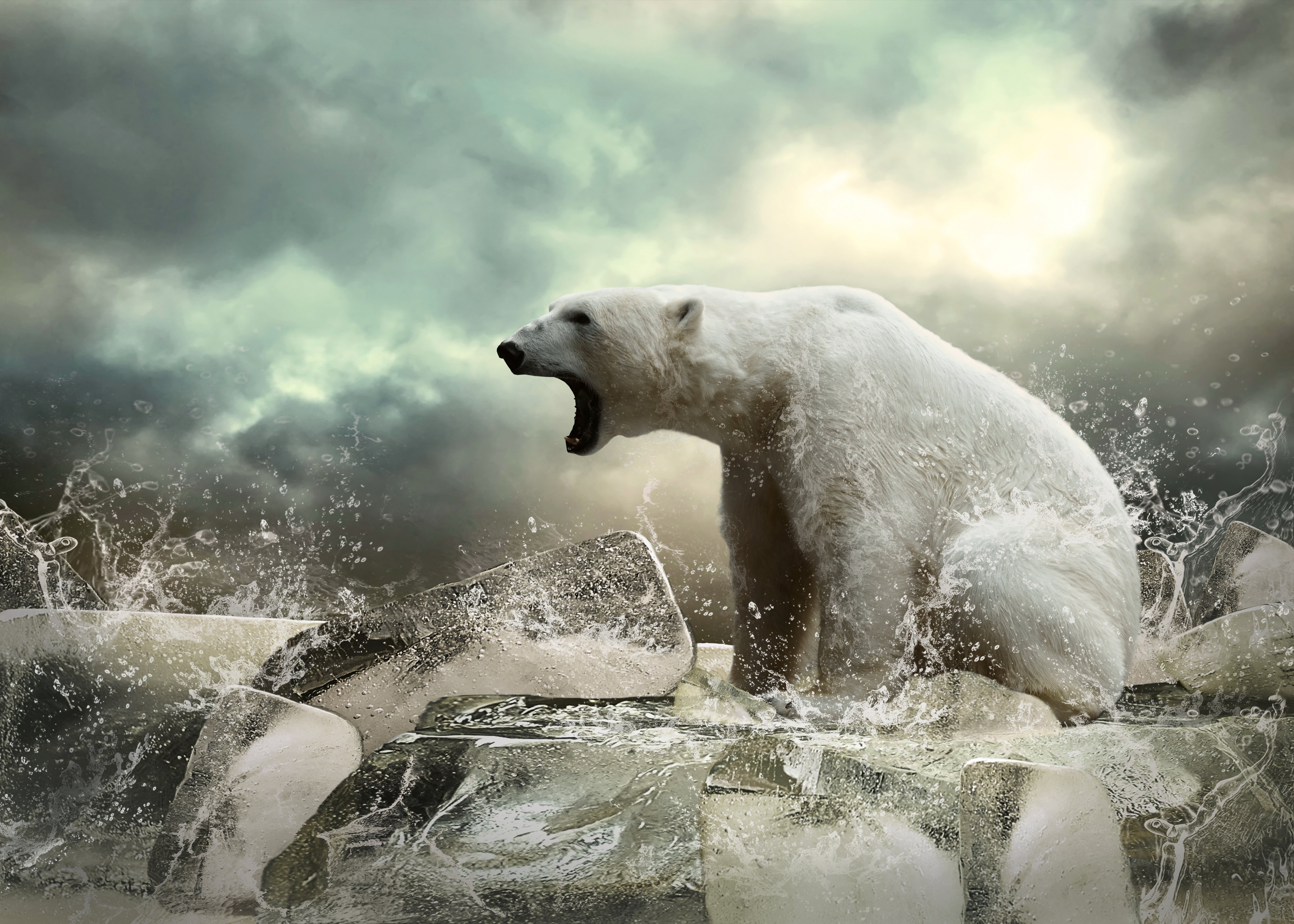 polar bear animal bear ice wallpaper | 7000x5000 | 599275 | wallpaperup