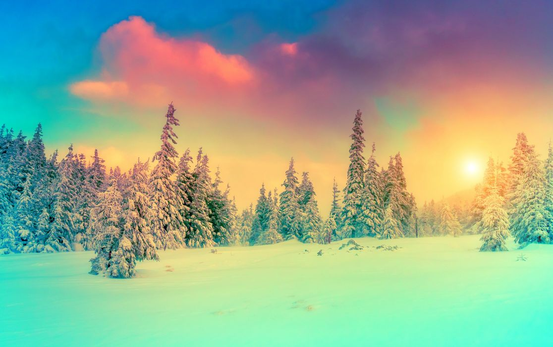 Seasons Winter Scenery Sky Fir Snow Nature wallpaper