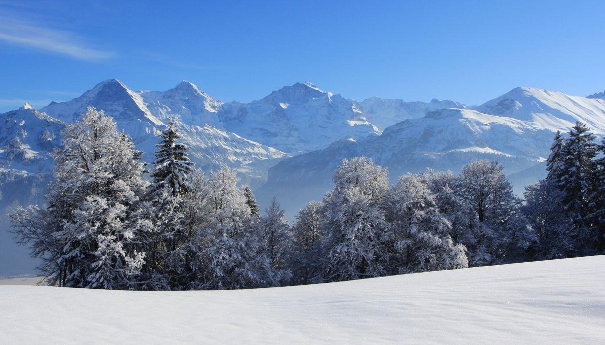 Switzerland Seasons Winter Mountains Fir Nature wallpaper