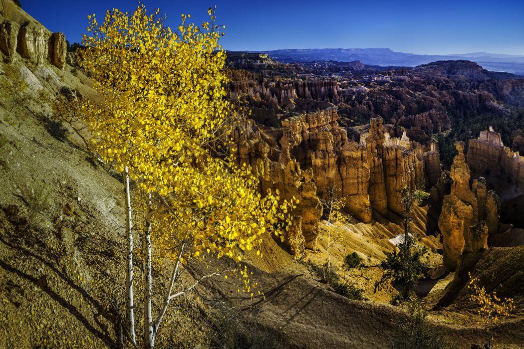 trees mountains rocks USA Utah Bryce Canyon National Park wallpaper