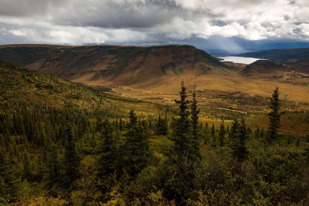 USA Park Scenery Mountains Denali Alaska Fir Nature wallpaper