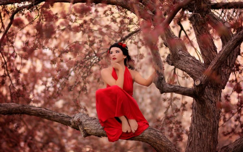 SENSUALITY - red dress girl Thoughtful tree wallpaper