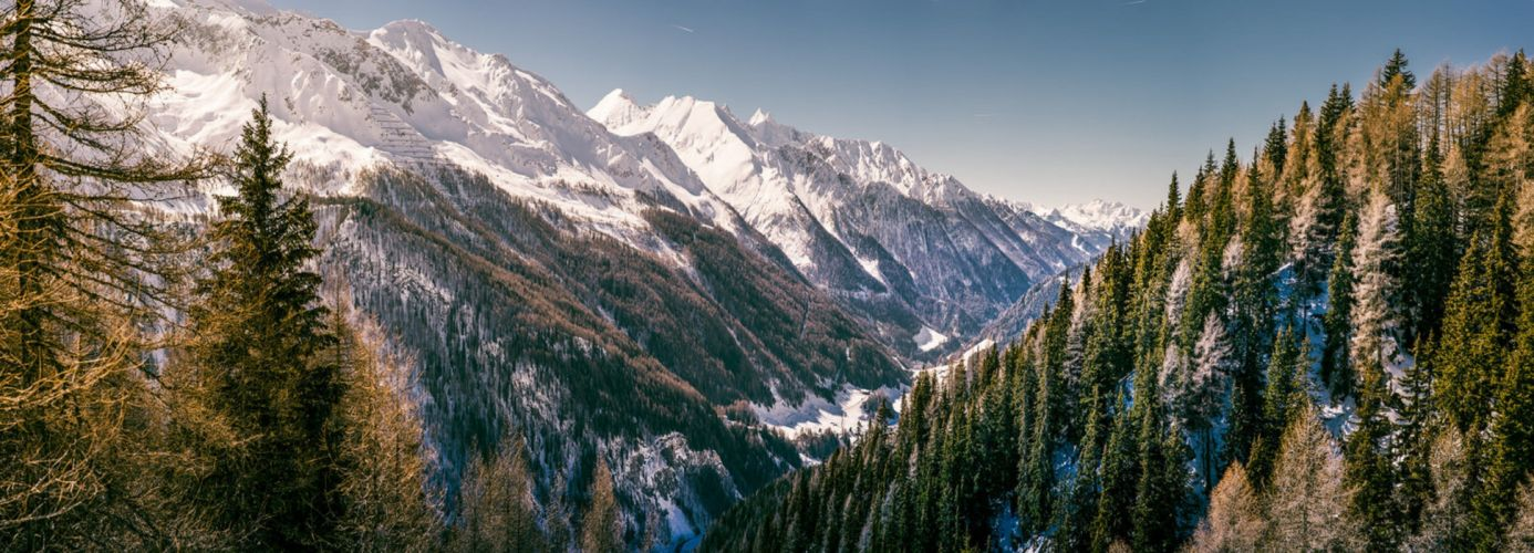 panorama dual monitor mountain forest snow wallpaper