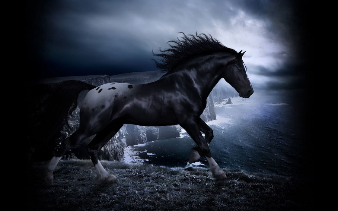Black horse dark wallpaper