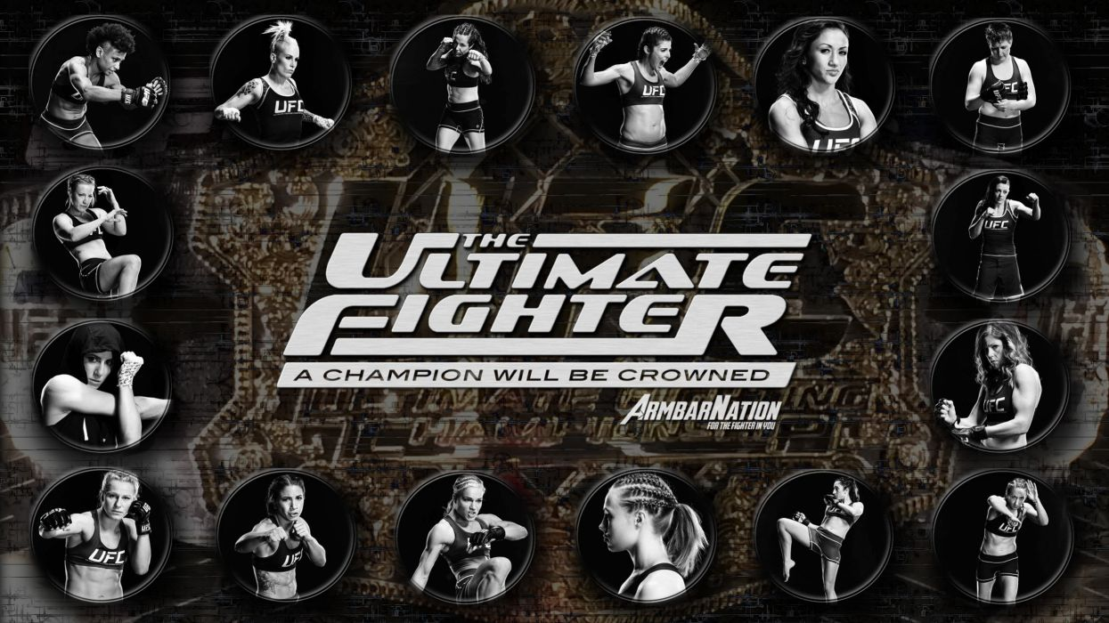 UFC mma fighting martial arts wrestling boxing sexy babe poster wallpaper