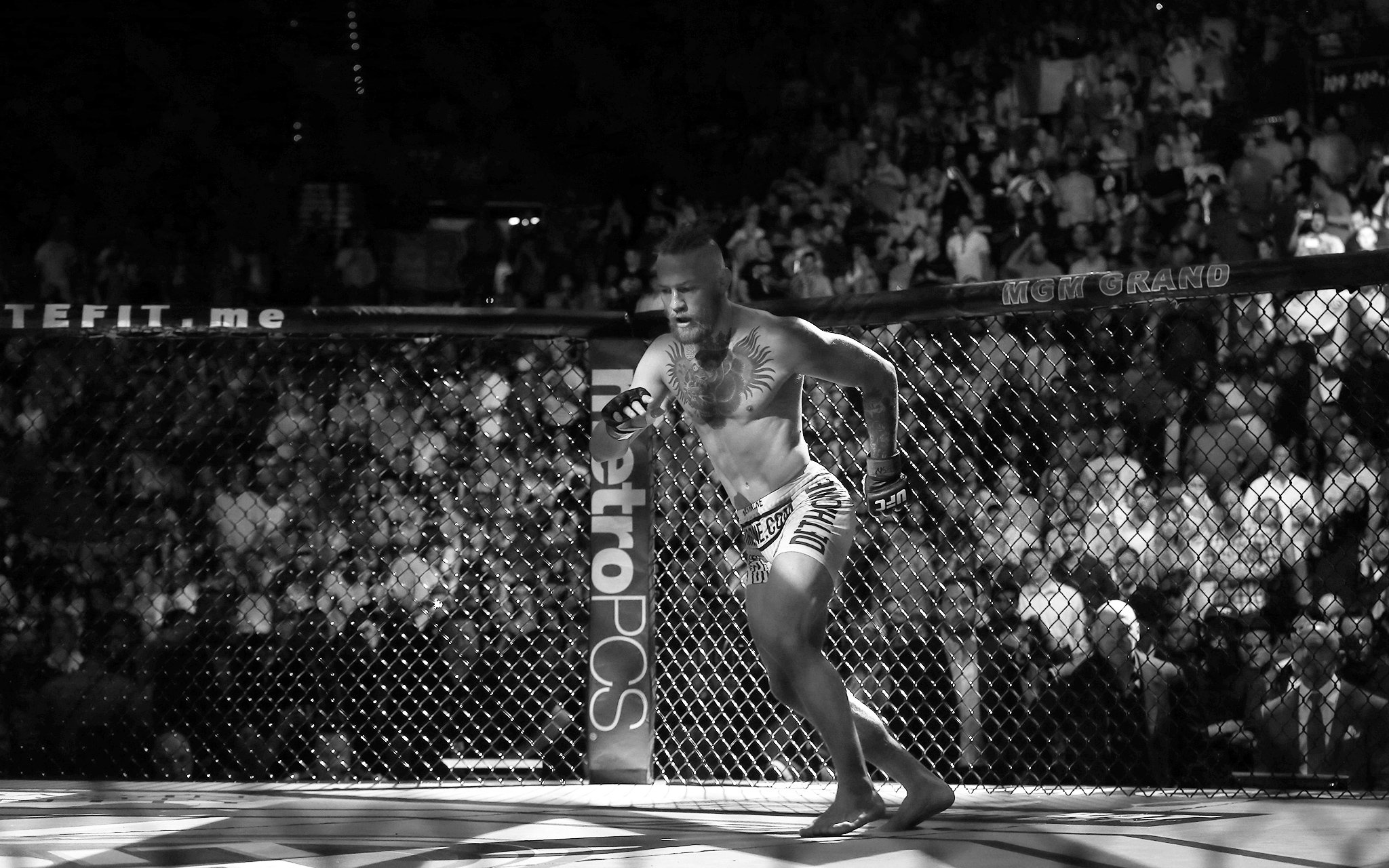 Conor Mcgregor Wallpaper Black And White: UFC Mma Fighting Martial Arts Wrestling Boxing Wallpaper