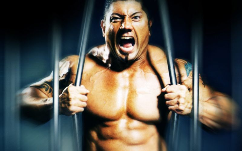 WWE wrestling fighting warrior wallpaper