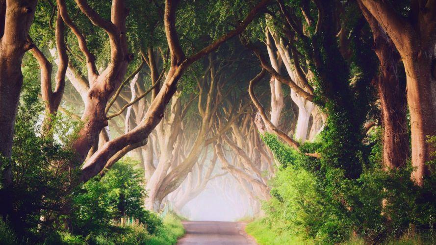 NORTHERN IRELAND ROAD wallpaper