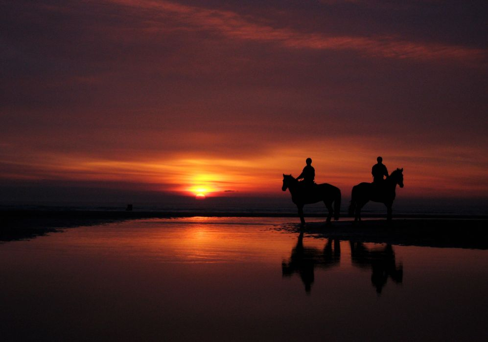 the horses the riders the beach the west of the sun wallpaper