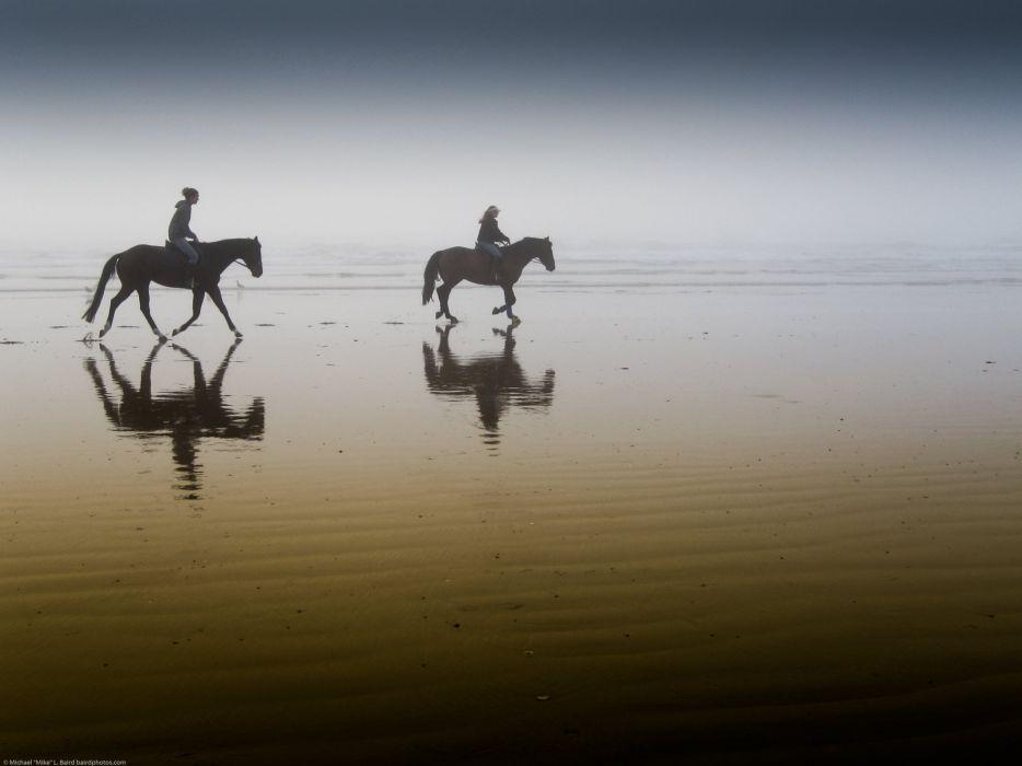 horses riders beach fog morning wallpaper
