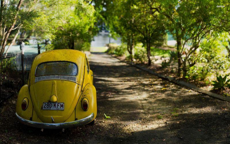 22891-yellow-volkswagen-beetle-1920x1200-car-wallpaper wallpaper