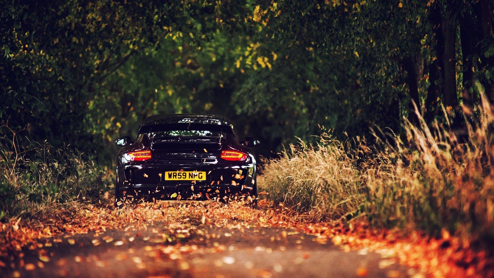 Porsche 911 Car Hd Wallpaper 1920x1080 1338