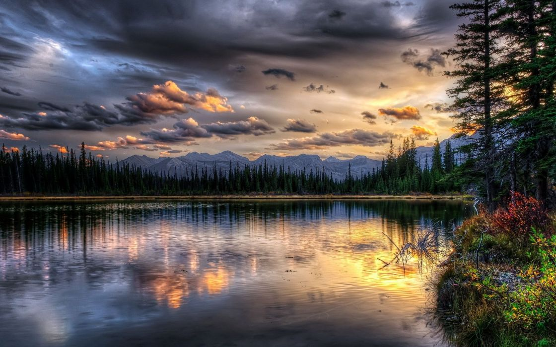 landscape nature beautiful forest area wild sky landscapes wallpaper