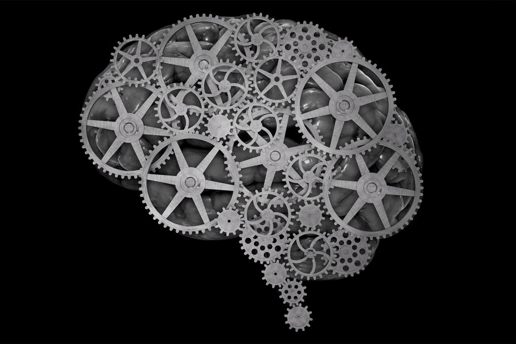 brain anatomy medical head skull gear gears psychedelic wallpaper