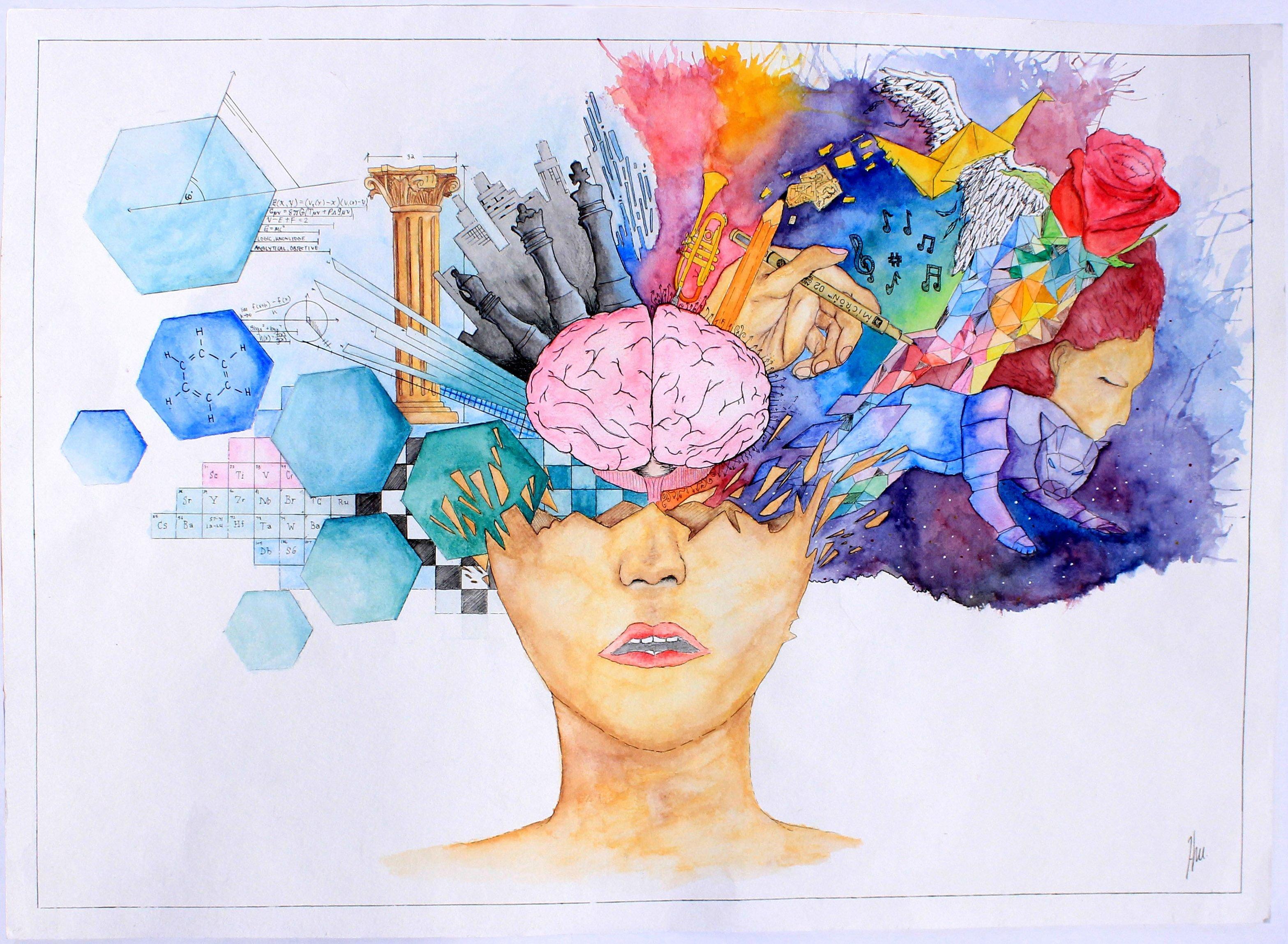 Brain anatomy by hackamore on DeviantArt