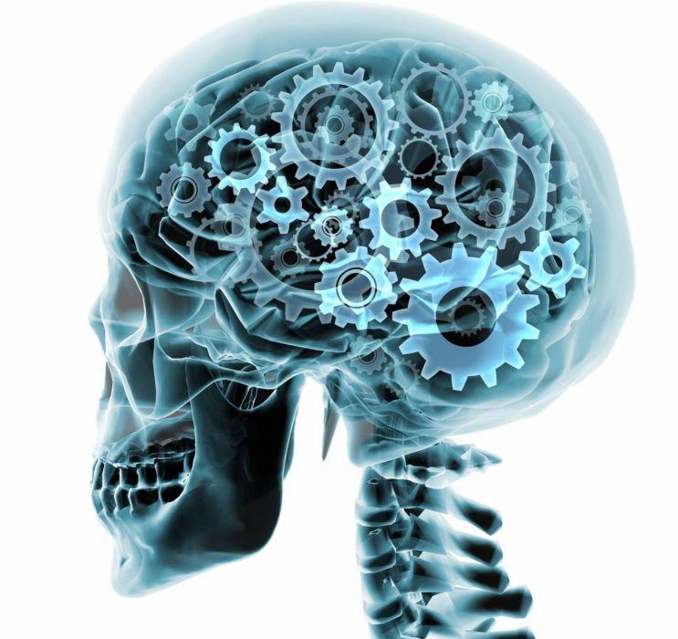 brain anatomy medical head skull digital 3-d x-ray xray psychedelic gears gear wallpaper