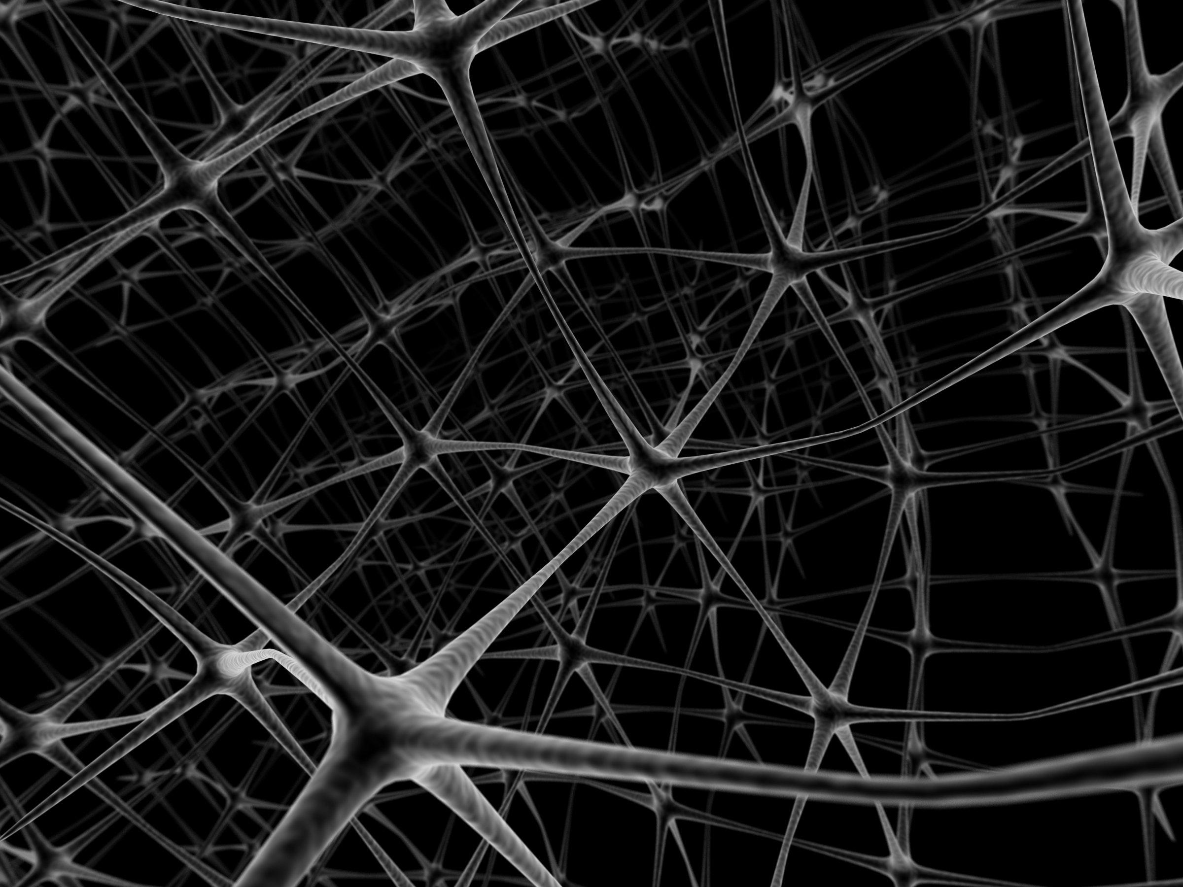 medical wallpaper black: Brain Anatomy Medical Head Skull Digital 3-d Psychedelic