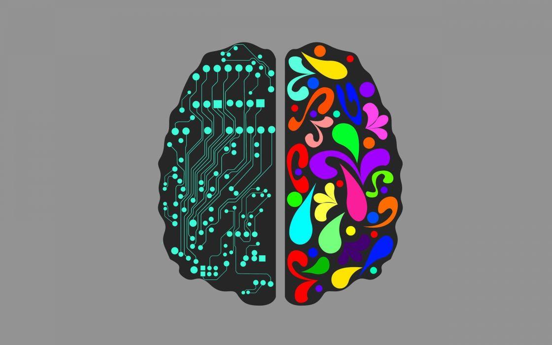 brain anatomy medical head skull psychedelic wallpaper