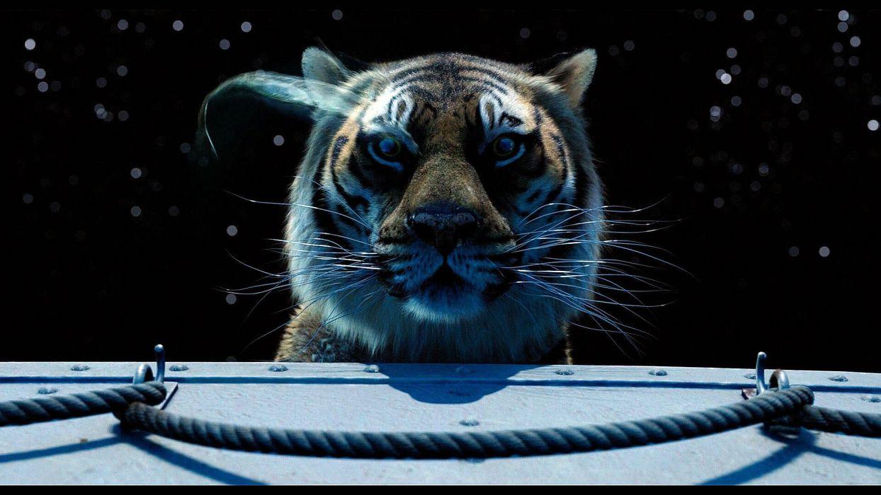 LIFE Of Pi family adventure drama fantasy tiger 3-d animation 1lifepi friend shipwreck predator tiger ocean sea voyage ship boat wallpaper
