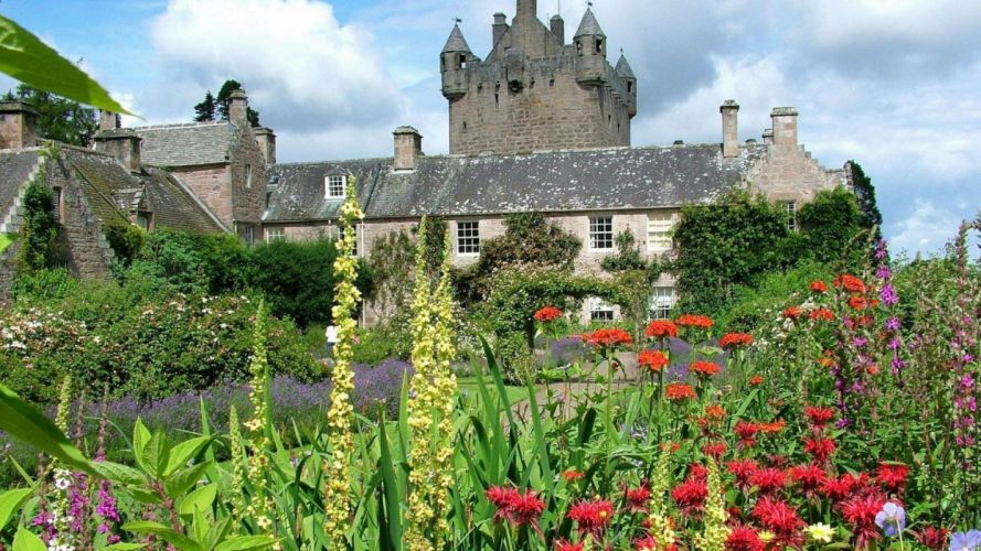 castillo-pais de gales-naturaleza-flores wallpaper