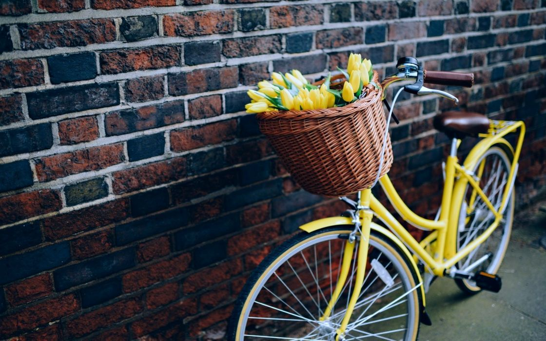flowers bike yellow wall Bicycle life love wallpaper