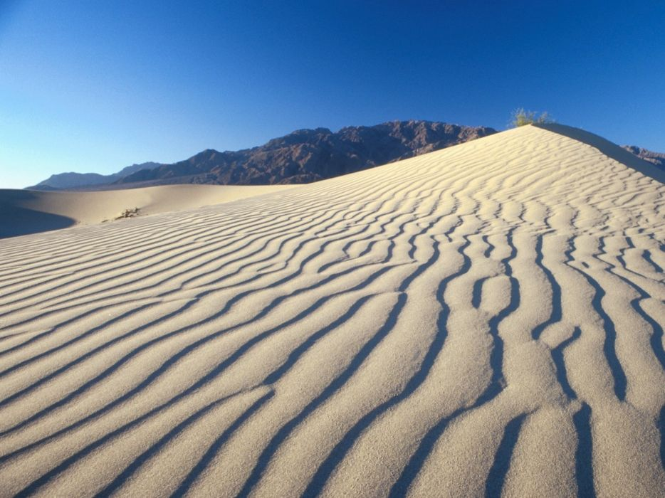 desierto-arenas-dunas-naturaleza wallpaper