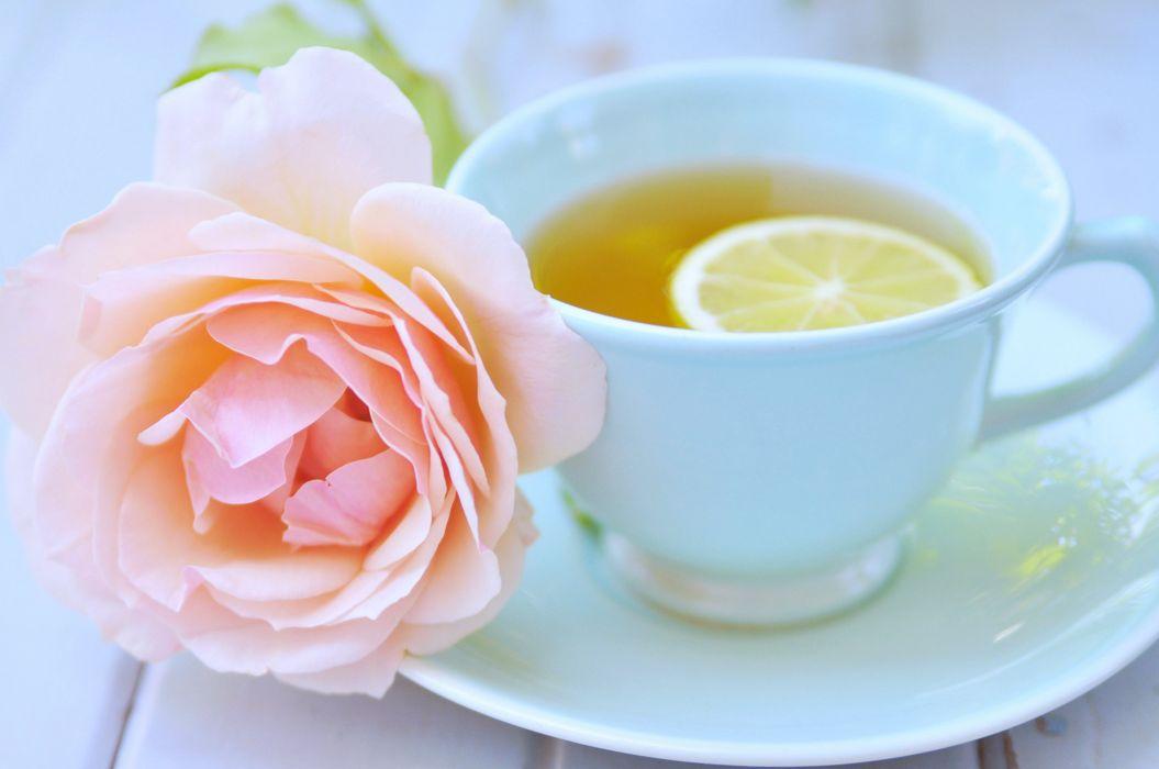 rose flowers tea cup love romance relax emotions Lemon spring wallpaper